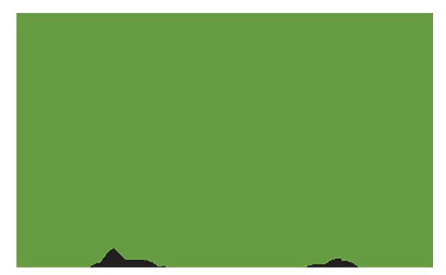 IGI letters